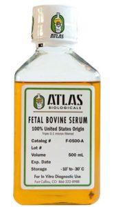 Fetal Bovine Serum 500mL bottle
