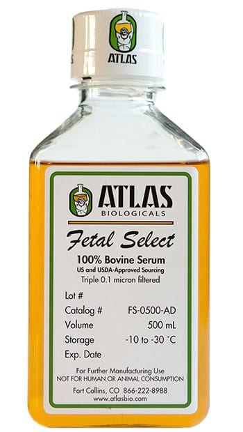 Fetal-Select