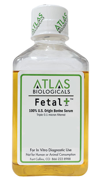 properly-sized-Fetal-Plus